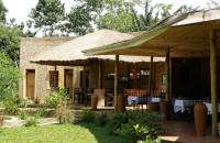 Primate Lodge in Kibale (7)