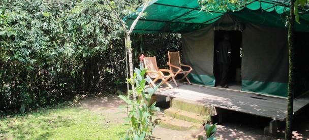 Wagtail Eco safari camp (2)