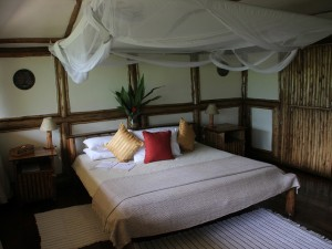 Buhoma Lodge (4)