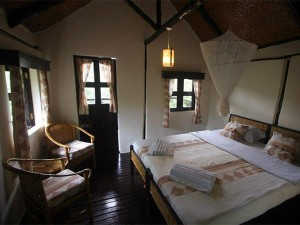 Chimps Nest Cottage (2)