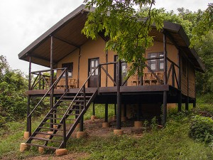Chimps Nest Cottage (4)