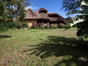 Chimps Nest Cottage (6)