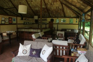 Gorilla Forest Camp (6)
