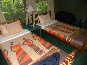 Kibale Forest Camp (6)