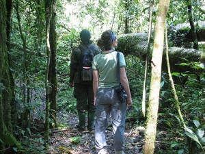 Kibale Forest National Park (6)