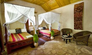 Primate Lodge in Kibale (5)