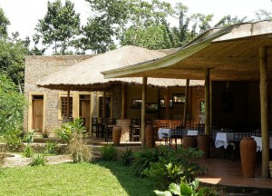 Primate Lodge in Kibale (7)