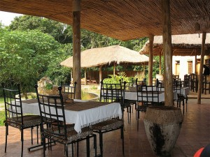 Primate Lodge in Kibale (8)
