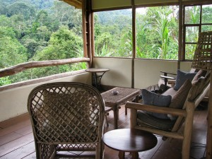 Volcanoes Bwindi Lodge (3)
